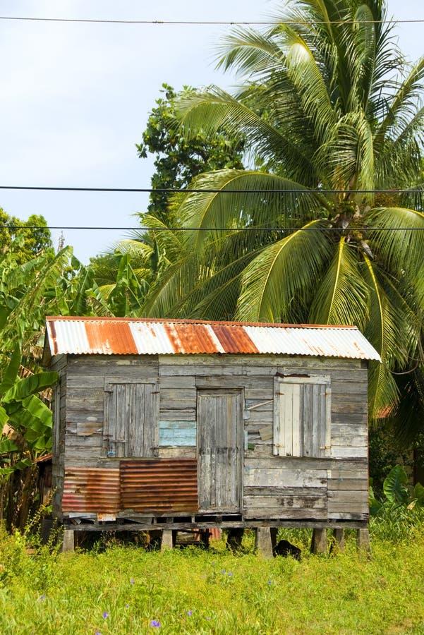Van de het huiswildernis van de dakspaan het Eiland Nicaragua van het Graan royalty-vrije stock afbeelding
