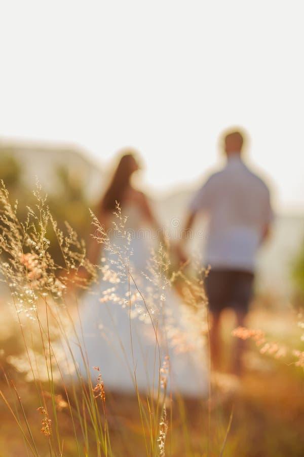 Van de het paarreis van het wittebroodswekenhuwelijk de achtermening royalty-vrije stock afbeelding