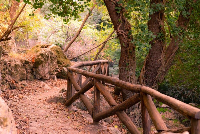 Van de het ravijn grote steen van de spoorberg bos van de het mos aarden weg de omheinings houten omheining, trekkingsvakantie stock afbeelding