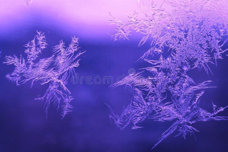 Van de het Seizoenfantasie van de de wintervakantie de Wereldconcept: Macrobeeld van de Natuurlijke Patronen van Ijskristallen op stock afbeeldingen