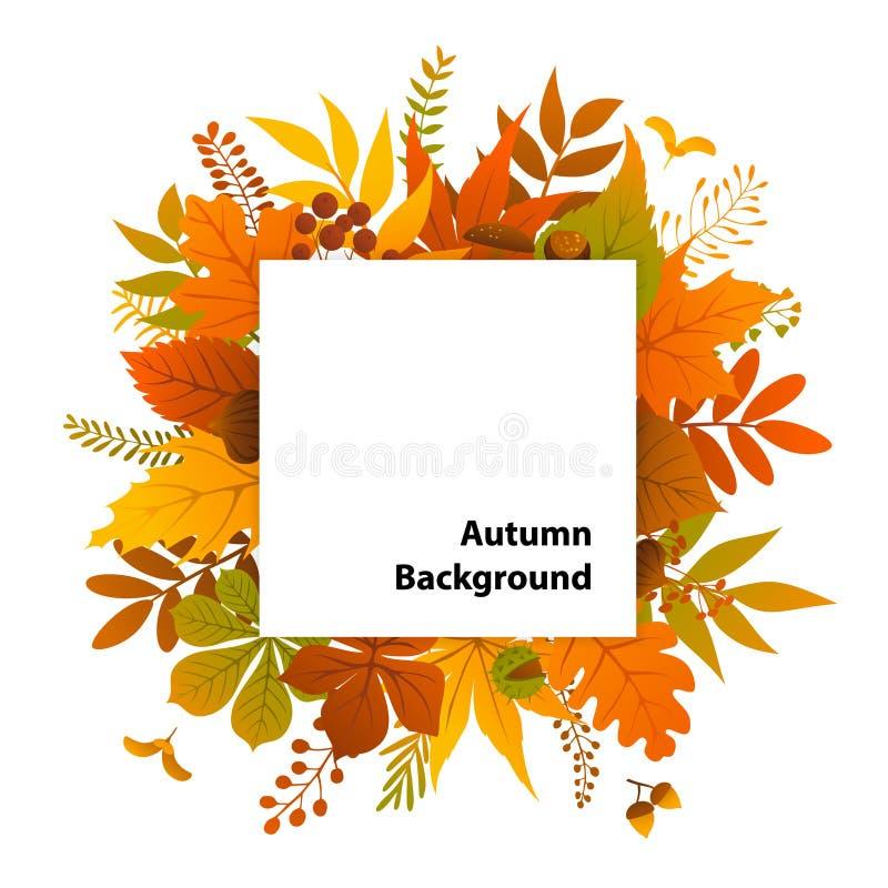 Van de installatiestakjes van de herfstbladeren het vierkante kader stock illustratie