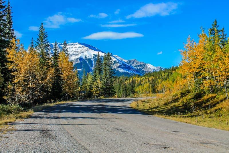 Van de kant van de weg, het Provinciale Park van de Schapenrivier, Alberta, Canada stock afbeelding