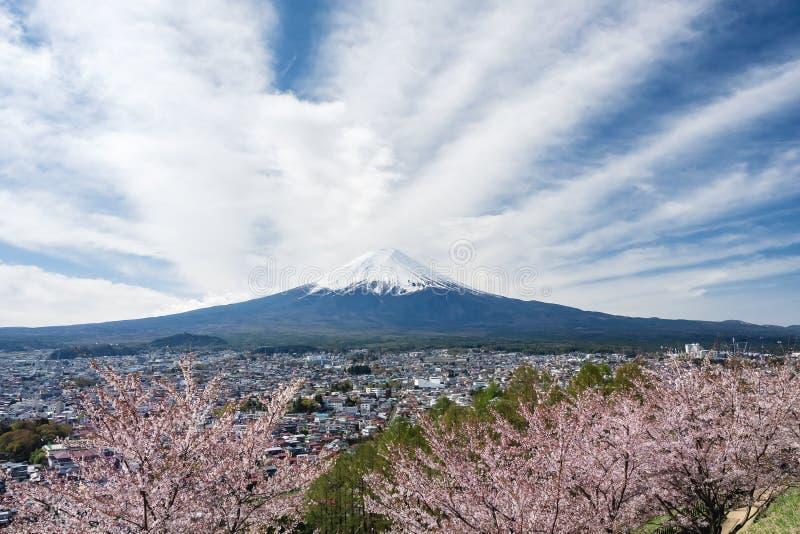 Van de de kersenbloesem van bergfuji de lentetijdlandschap van Japan royalty-vrije stock afbeeldingen