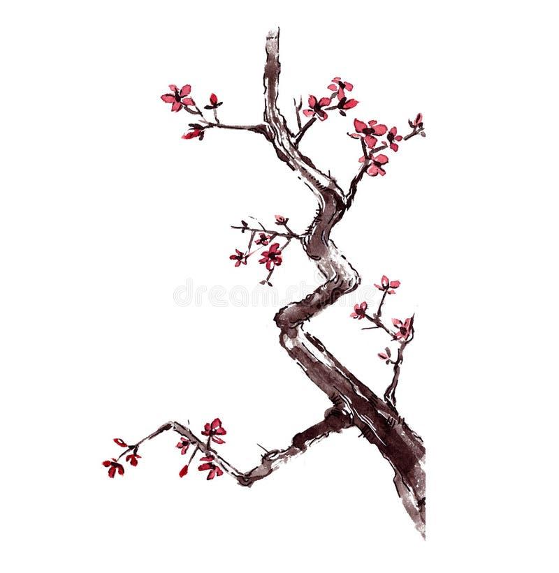 Van de de kersenwaterverf van Japan de boombloesem vector illustratie