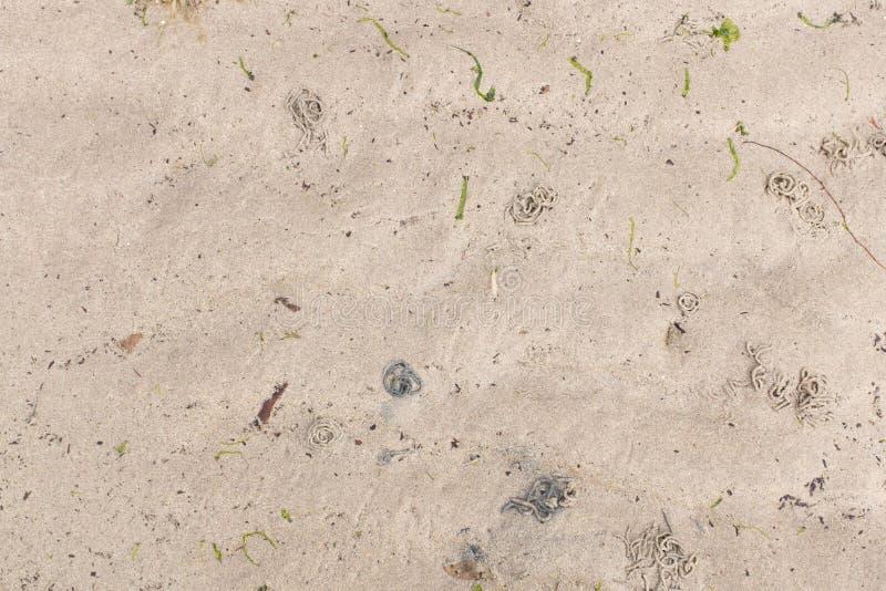 Van de overzeese de kleurenpatronen zandgolf royalty-vrije stock foto's
