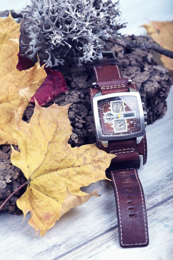 Van de de Paskalender van de polshorloge de Conceptuele Tijd Riem van het Seizoenlichen hour zone cork leather stock foto
