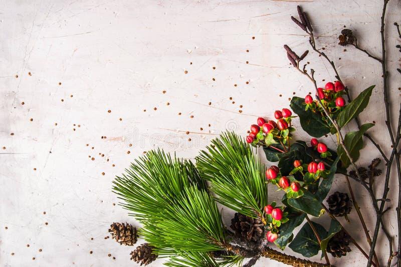 Van de pijnboomtak en winter installaties op de witte lijst royalty-vrije stock afbeelding