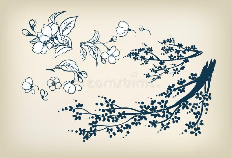 Van de sakura de vectorschets van de kersenbloesem elementen van het de illustratieontwerp vector illustratie