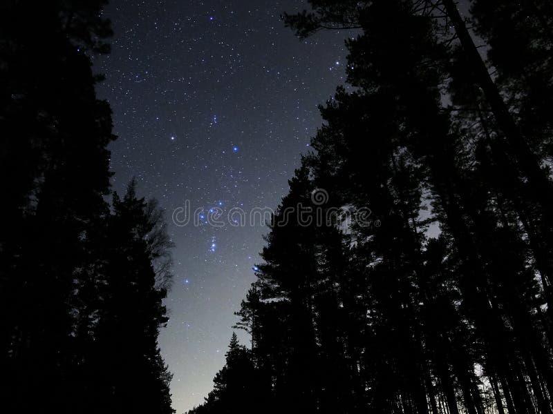 Van de sterrenorion van de nachthemel de constellatienevel royalty-vrije stock foto's