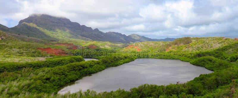 Van de de vissenvijver van Menehune van het panoramalandschap aka Alekoko Fishpond in de zomer, dichtbij Lihue, Kauai, Hawaï, de  stock afbeelding