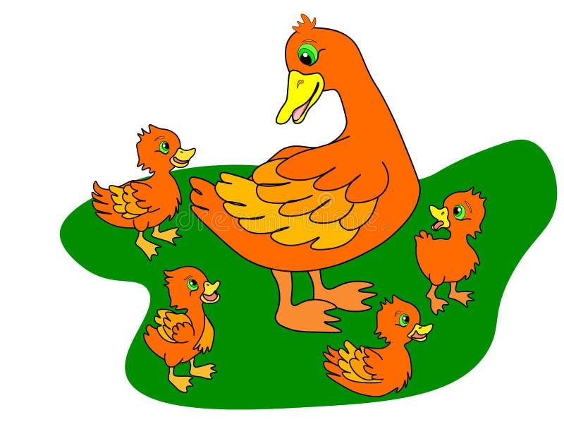 Van de Webeendjes en moeder eend Eendenfamilie, eendje na mamma en lopende de kuikensgroep van de wilde eendbaby royalty-vrije illustratie