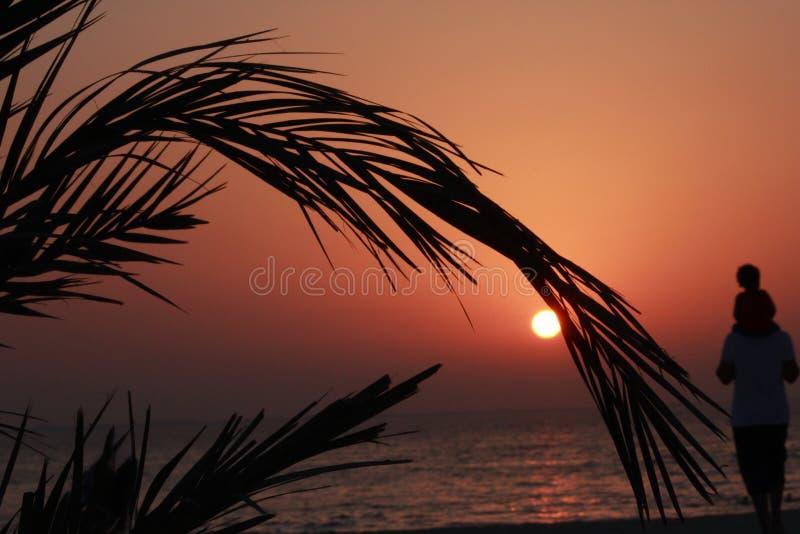Van de de zoonsreis van de familievader van de het strandzonsondergang van de de datumpalm het zeewater van de het silhouetzon stock afbeelding
