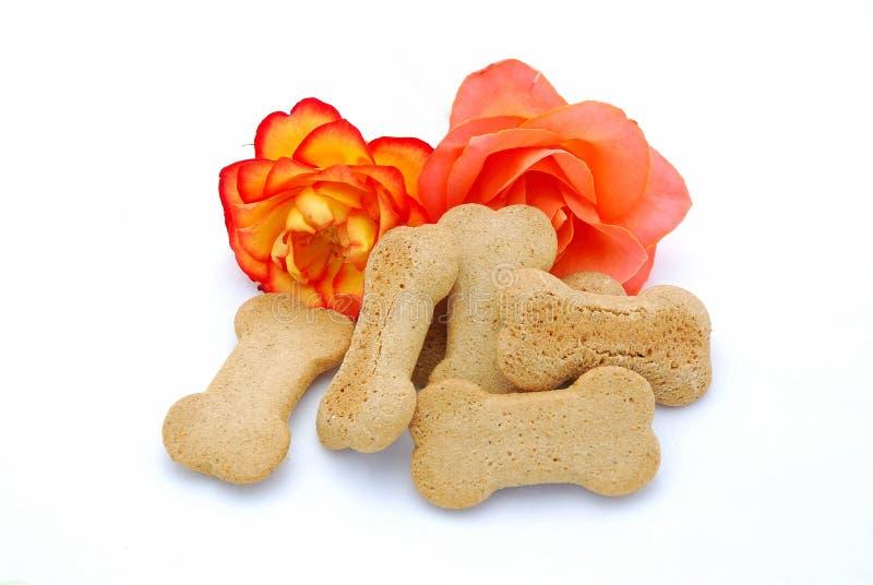 Van een hond koekjes met rozen royalty-vrije stock foto's