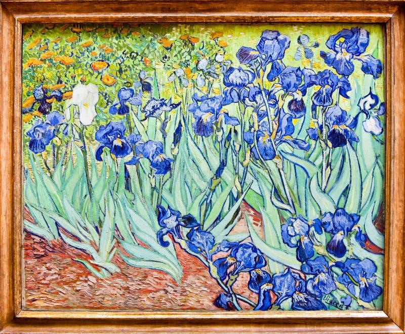 Van Gogh, Iris Painting, museo di Getty, Los Angeles - originale immagini stock
