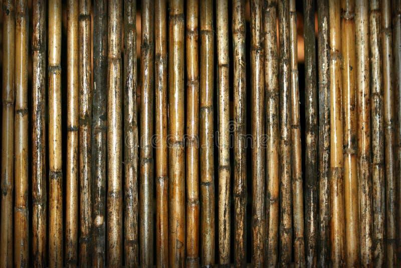 Van het achtergrond bamboe patroon royalty-vrije stock afbeeldingen