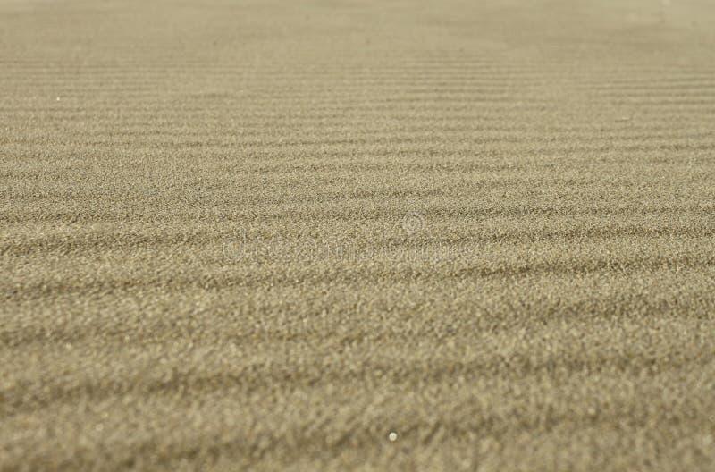 Van het achtergrond zand textuur stock fotografie