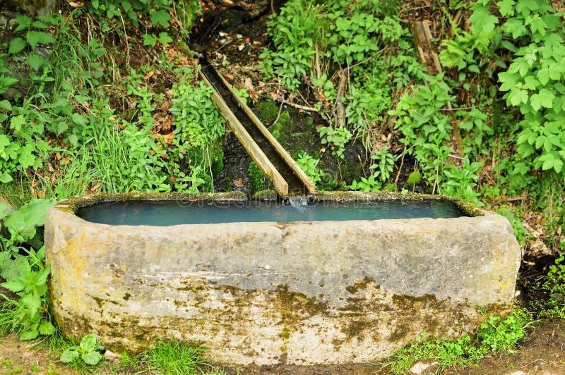 Van het Bron cristal het schone water gieten royalty-vrije stock afbeeldingen