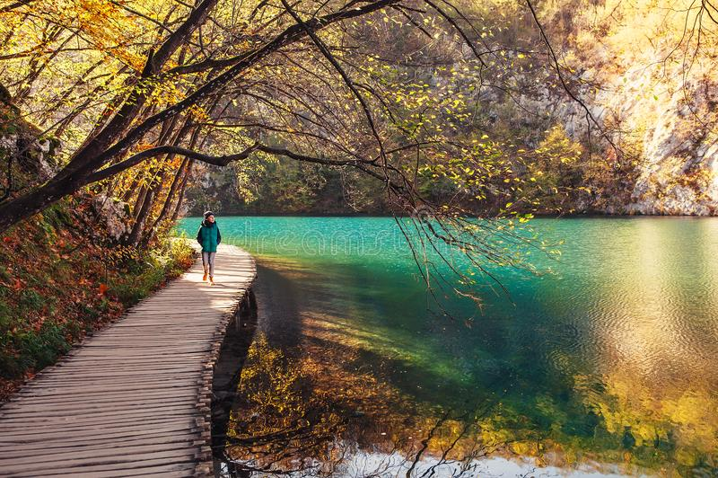 Van het de aardpark van Kroatië de Meren van Plitvice in de herfst - jongensgangen op brid royalty-vrije stock foto
