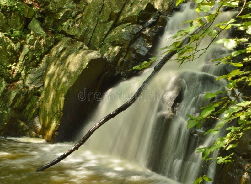 Van het de Aardpark van het watervallandschap het Water Langzame Motie Vage Achtergrond royalty-vrije stock foto's