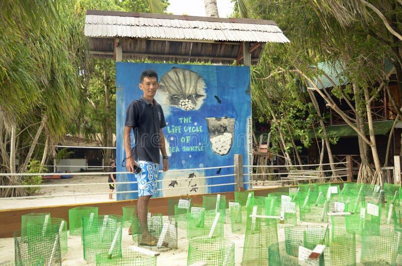 Van het de babykinderdagverblijf van zeeschildpaddeneieren het behoudsproject royalty-vrije stock afbeeldingen