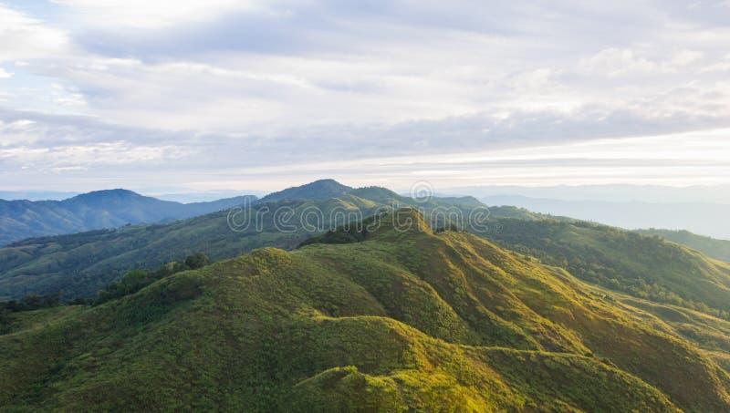 Van het de Berg Nationale Park van landschapsphu Langka Reis wijd 2 van Phayao Thailand royalty-vrije stock foto's