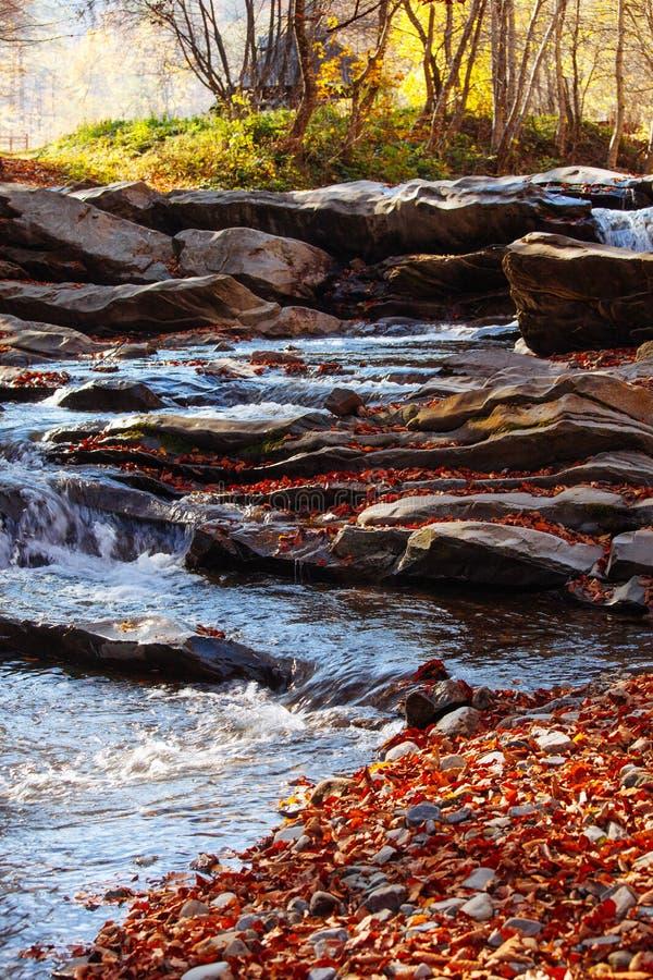 Van het de bezinnings boswater van de stenenwaterval van de herfstbomen van het de zonlandschap gele het parkbladeren royalty-vrije stock afbeeldingen