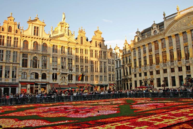 Van het de Bloemtapijt van Brussel België het Festival Grand Place stock foto