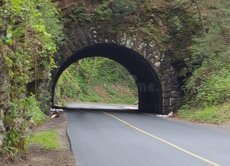 van het de inhamoosten van de bergtunnel cades de duif van Tennessee Sevierville smeedt Gatlinburg-de aardwild van rokers het rok stock foto's