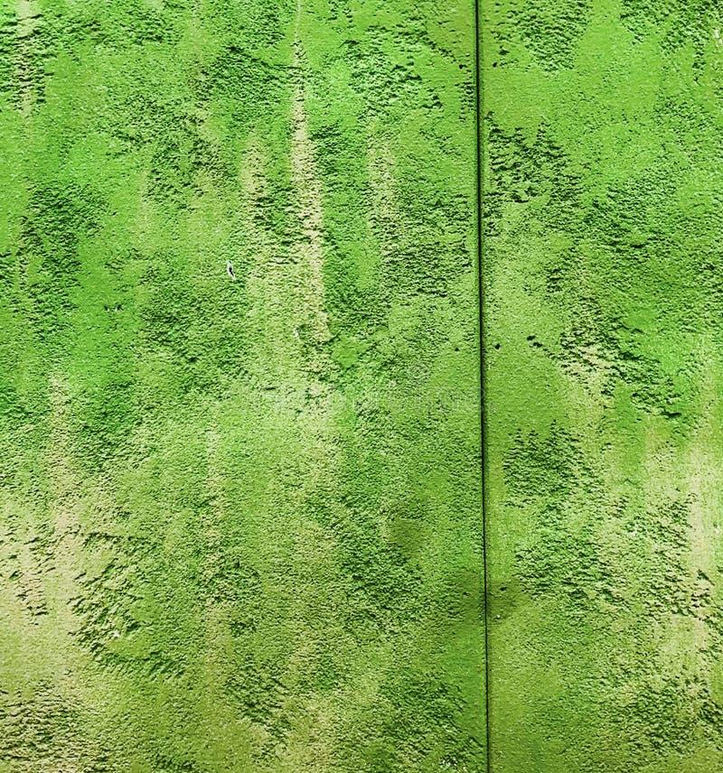 Van het de kleurenperspectief van Colorfull de trillende openlucht hobbelige freh groene uitstekende muur royalty-vrije stock afbeelding