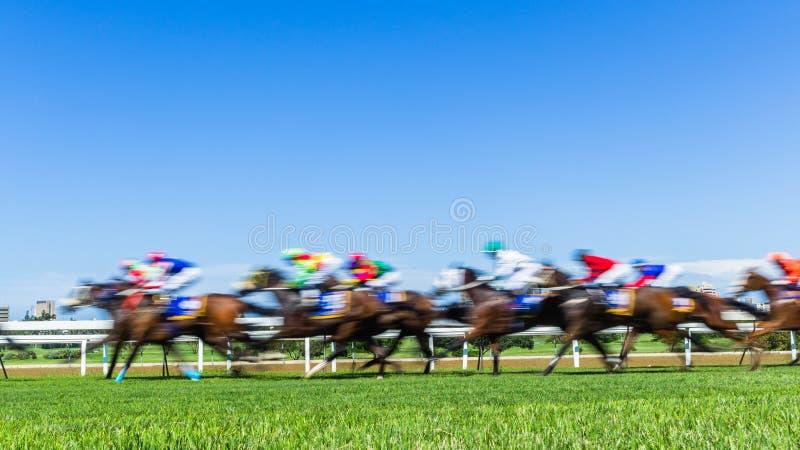 Van het de Motieonduidelijke beeld van de paardenrennensnelheid het Grasspoor royalty-vrije stock afbeelding