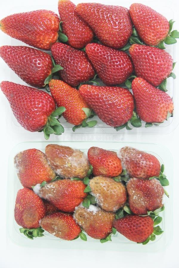 Van het de vorm heerlijk gezond fruit van het aardbeivoedsel landbouw geïsoleerd Sao Paulo Brazil stock afbeelding