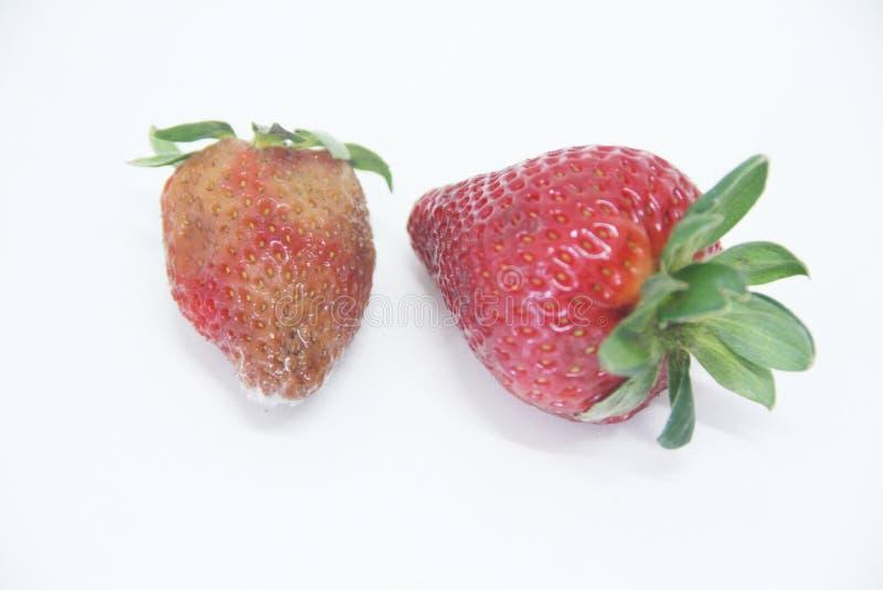 Van het de vorm heerlijk gezond fruit van het aardbeivoedsel landbouw geïsoleerd Sao Paulo Brazil stock foto