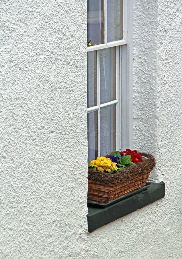 Van het het plattelandshuisjevenster van Kent de doosbloemen royalty-vrije stock afbeelding