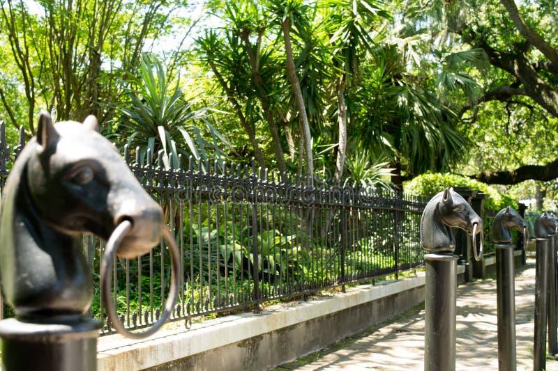 Van het Hoofdhitching van het Gietijzerpaard de postreeks royalty-vrije stock afbeelding