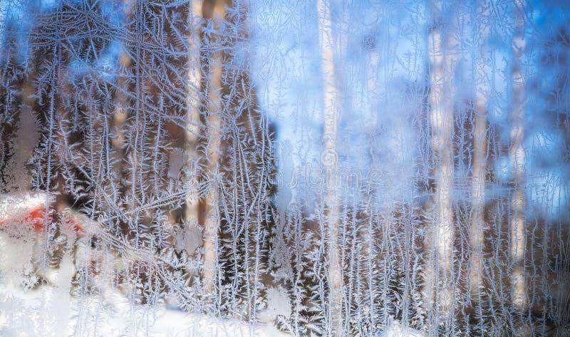 Van het Ijskristallen van de venstervorst het patroontextuur stock fotografie