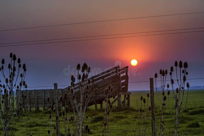 Van het landschapszonsondergang en weiland gebieden in Argentinië royalty-vrije stock afbeeldingen