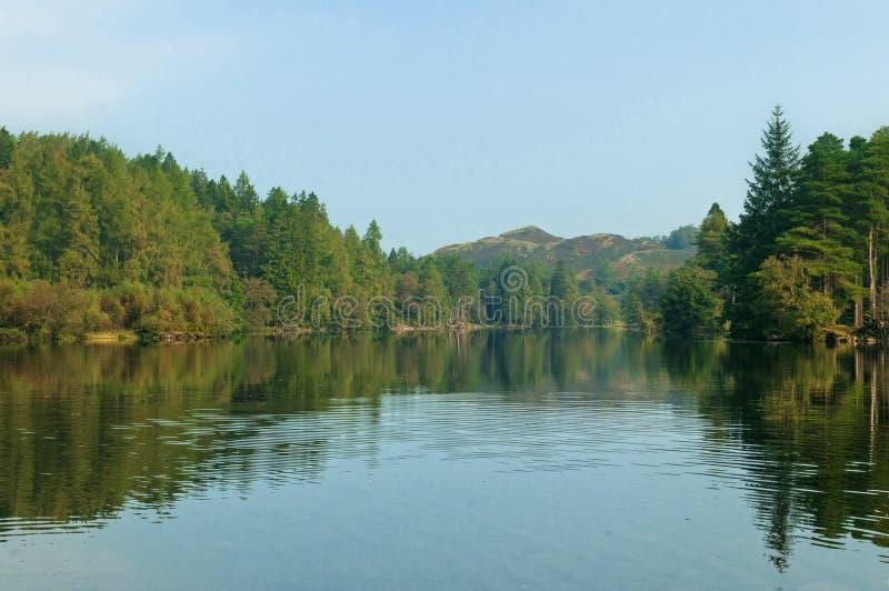 Van het het Meerdistrict van de Tarn Hows het Engelse Nationale Park van Cumbria stock afbeeldingen