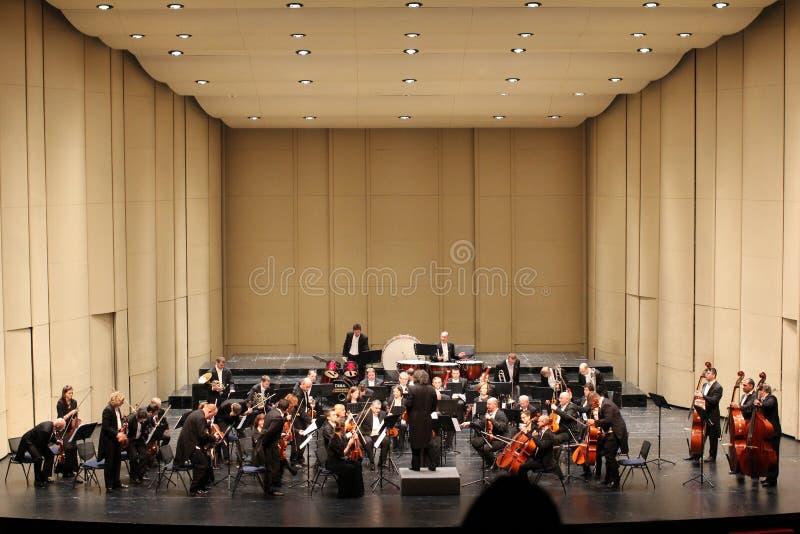 Van het overlegstraus van het nieuwe jaar filharmonische societ stock afbeelding