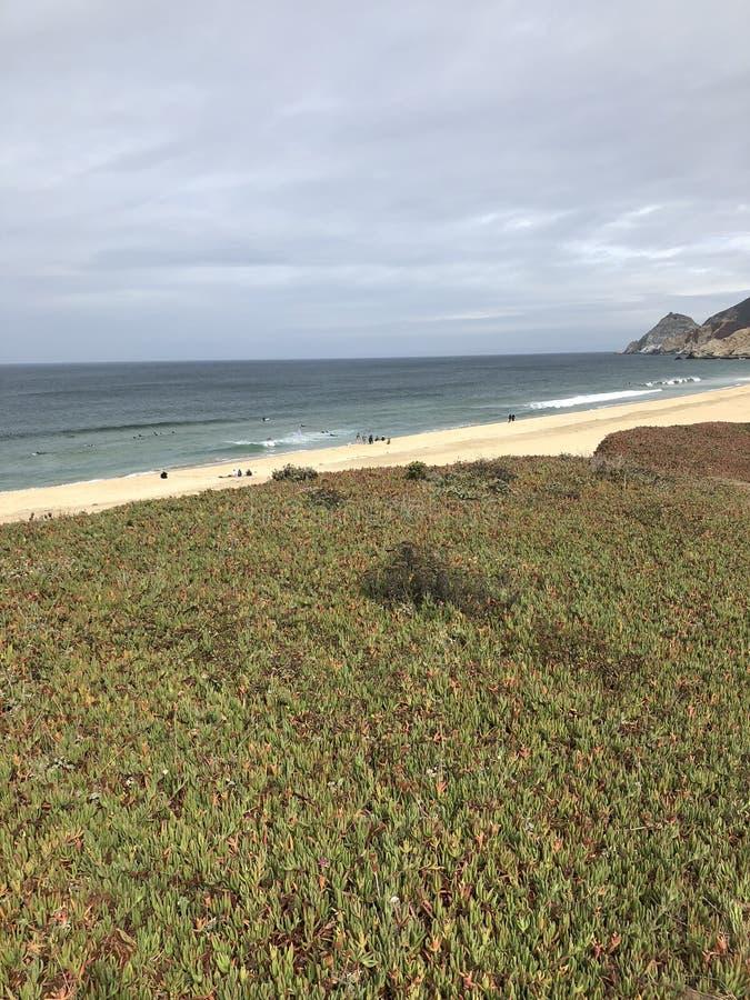 Van het strandcalifornië van de Montarastaat de vaten van de staat in de binnenkommen stock foto