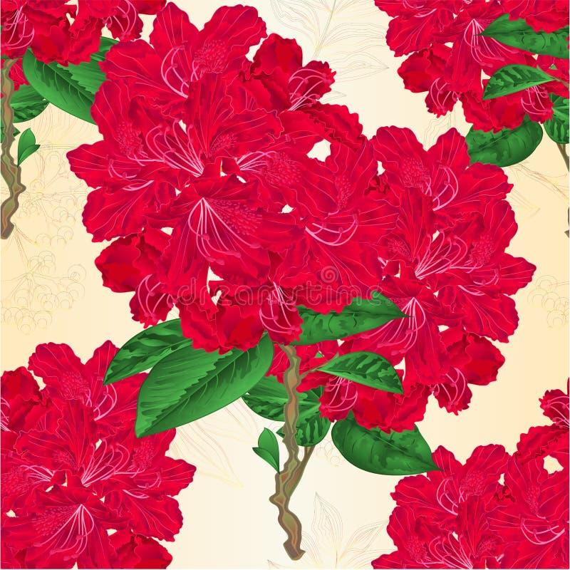 Van het takjerododendrons van takjes rode bloemen de bergstruik op een witte uitstekende vector editable illustratie als achtergr stock illustratie