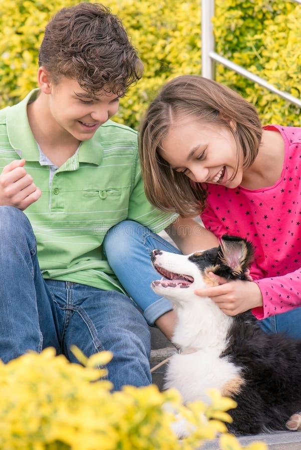 Van het tienerjongen en meisje het spelen met puppy stock foto