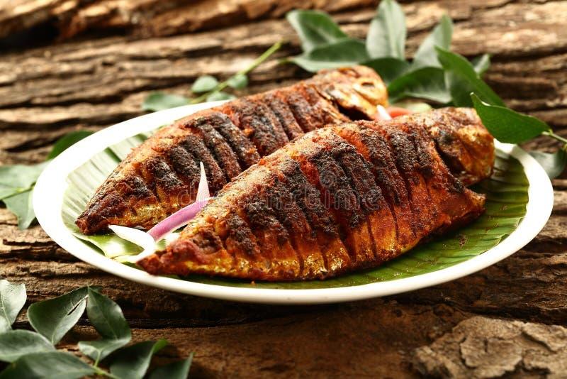Van het voedsel eigengemaakt vissen van Kerala het gebraden gerecht authentiek recept royalty-vrije stock afbeelding