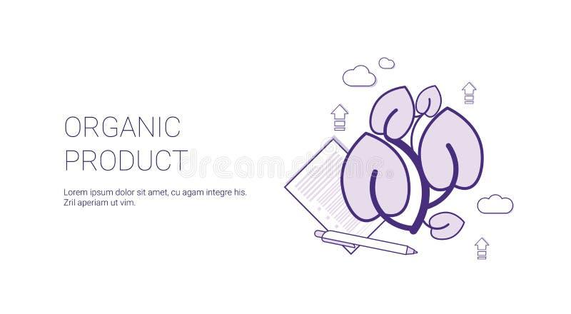 Van het het Voedselconcept van biologisch producteco de Banner van het het Malplaatjeweb met Exemplaarruimte royalty-vrije illustratie