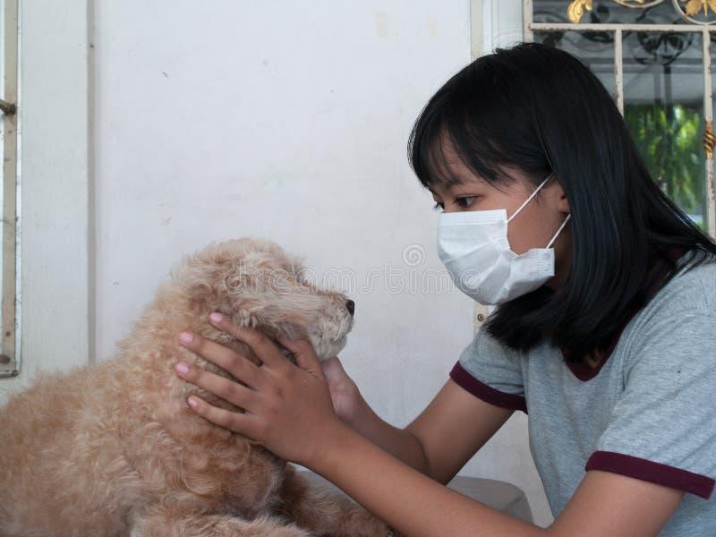 Van huisdierenallergieën royalty-vrije stock foto