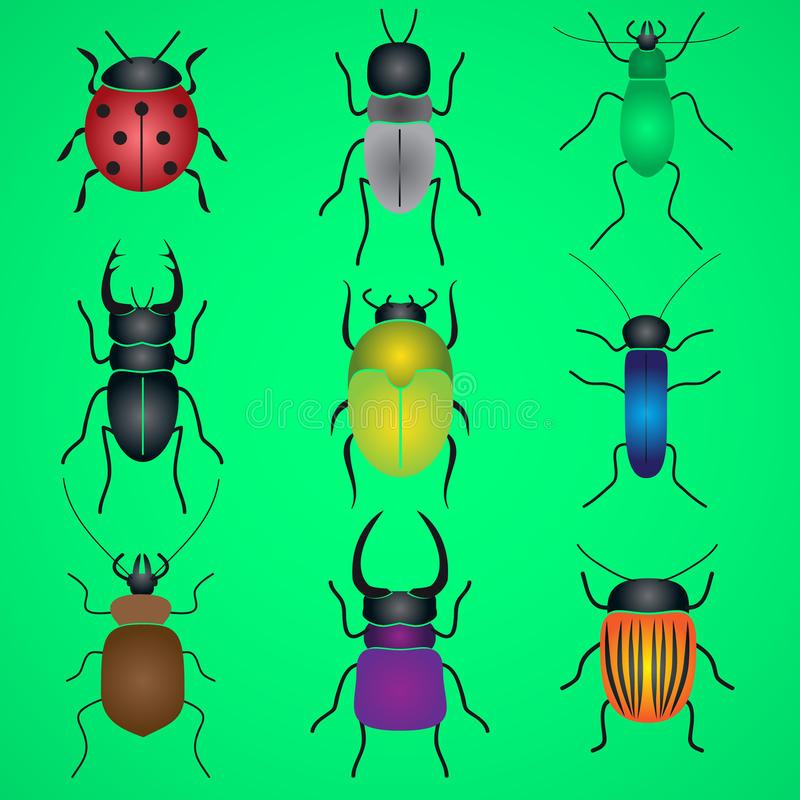 Van kleureninsecten en kevers geplaatste pictogrammen vector illustratie