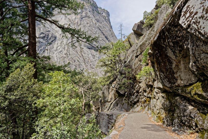 Van Lentedaling aan Yosemite-Vallei stock foto