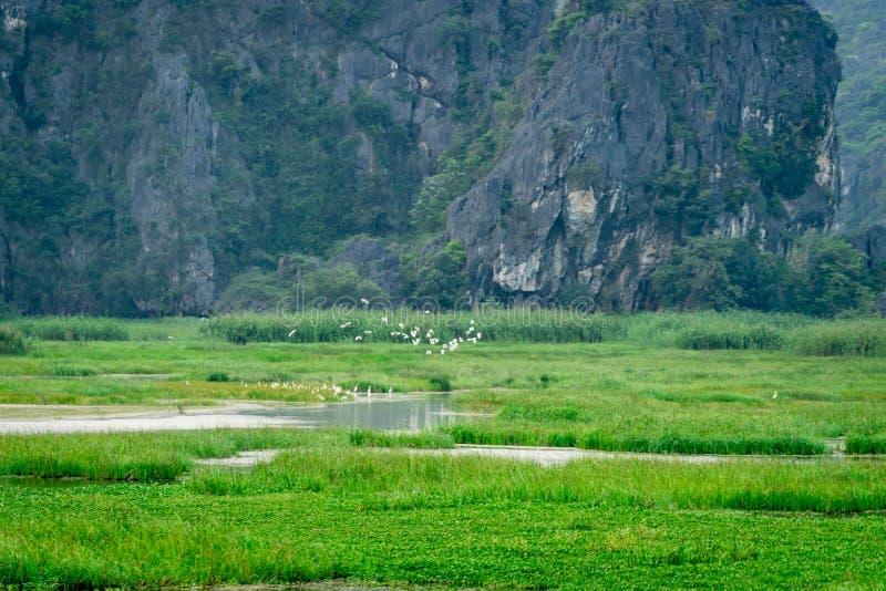 Van Long Reserve όπου πάρτε τον κινηματογράφο Kong: Νησί κρανίων στοκ φωτογραφίες