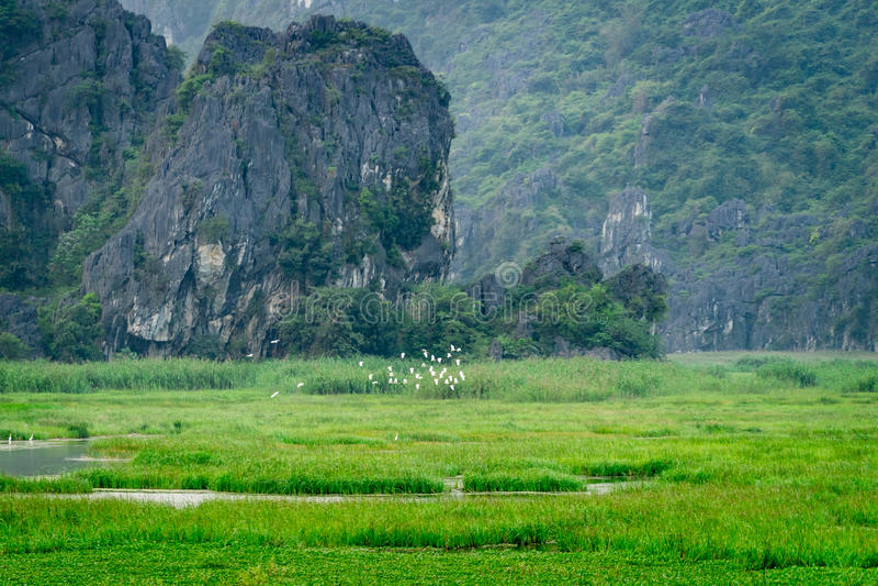 Van Long Reserve όπου πάρτε τον κινηματογράφο Kong: Νησί κρανίων στοκ φωτογραφία