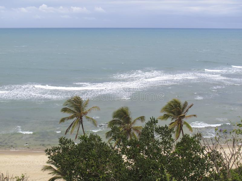 Van Pipastrand en Baia Dos Golfinhos - het Strand van Geboorte, Rio Grande doet Norte, noordoostelijke kust van Brazilië royalty-vrije stock afbeeldingen