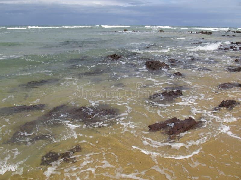 Van Pipastrand en Baia Dos Golfinhos - het Strand van Geboorte, Rio Grande doet Norte, noordoostelijke kust van Brazilië stock foto